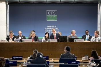 El Embajador Mario Arvelo presidiendo el Comité de Seguridad Alimentaria Mundial • Ambassador Mario Arvelo presiding the Committee on World Food Security